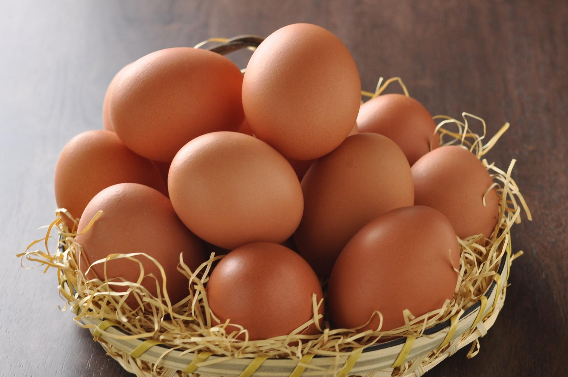 のびのび育った平飼い卵